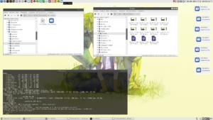 запись экрана ubuntu